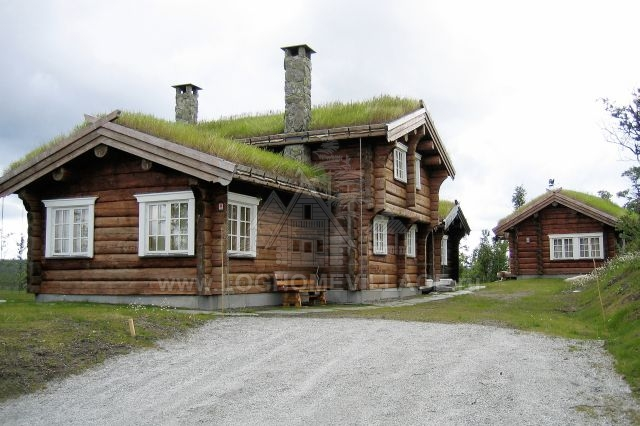 Norwegian log house style for Norway wooden houses
